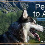 انتقال حیوانات خانگی به استرالیا